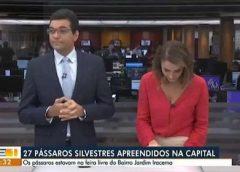 Apresentadores levam advertência após ataque de riso na TV, confira!