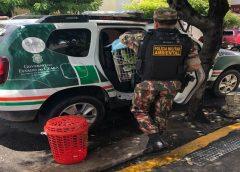 Policiais acusados por corrupção no Ceará terão celulares enviados ao RJ para extração de dados