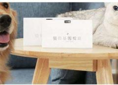 Xiaomi lança teste genético para detectar doenças em cães e gatos
