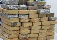 Polícia Civil apreende 31 quilos de maconha e prende dois suspeitos por tráfico de drogas