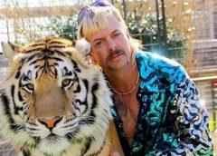 Polícia investiga zoo famoso após achar 'cadáver' no poço do jacaré