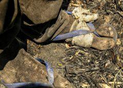 No Ceará, 289 trabalhadores foram flagrados em condições análogas à de escravidão na última década